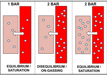 On-Gassing Diagram