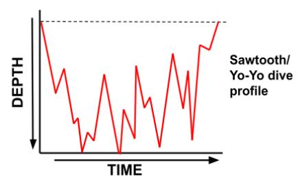 Sawtooth Dive Profile